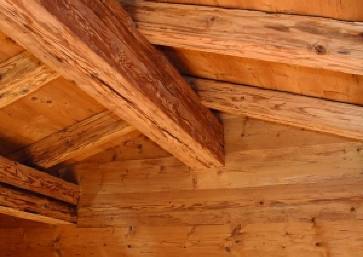 Holz mit Charakter - Für Fassade, Wand, Decke